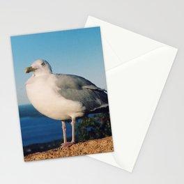 Brooklyn Gull Stationery Cards
