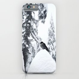 Whiskey Jack in the snow iPhone Case