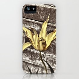Living in the Real World iPhone Case