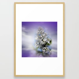 white lilac on textured background -a- Framed Art Print