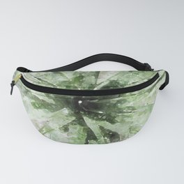 Cactus Rays Fanny Pack
