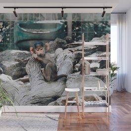 Monkey Business   Darling Downs, Australia Wall Mural