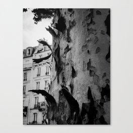 Paris in the fall Canvas Print