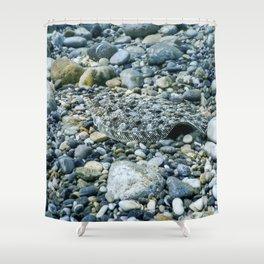 Flounder Camouflaged Underwater, Perfect Camouflaged Underwater life Shower Curtain