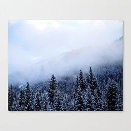 Colorado Snow Canvas Print