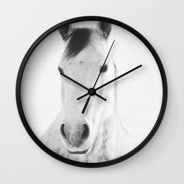 Winter White Horse Photograph Wall Clock