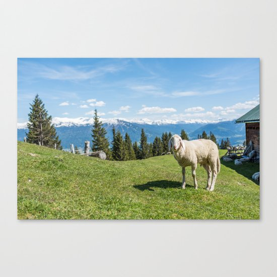 Me, the Sheeple?! Canvas Print