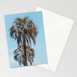 El Palmar National Park Palm Trees Blue Sky   Entre Rios, Argentina   Travel Landscape Photography Stationery Cards