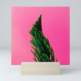 Green Plant on Pink Background Mini Art Print