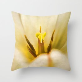 Beauty of Spring Throw Pillow