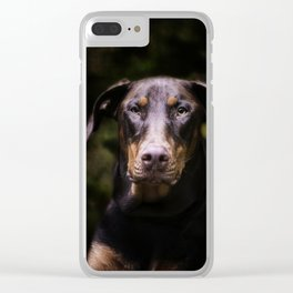 Red Dobie Clear iPhone Case