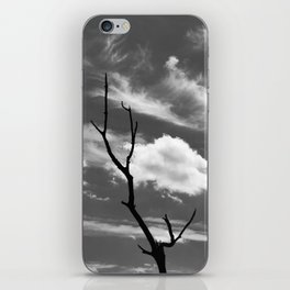 Black and white dead tree and sky with wispy clouds iPhone Skin