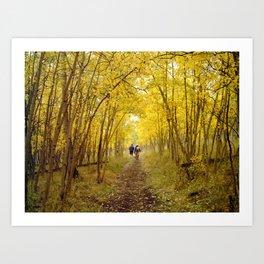 Fall's Golden Tunnel Art Print
