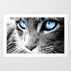 Kitty Blue Eyes Art Print