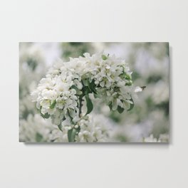 Whisper White Metal Print