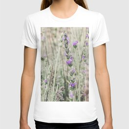 Lavender Fields of purple and green T-shirt