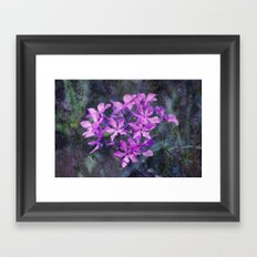purple pink flower explosions Framed Art Print