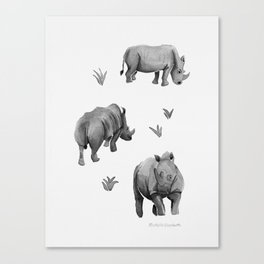 Rhino's Grazing - Black & White Canvas Print