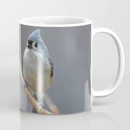 Tufted Titmouse 9639 Coffee Mug