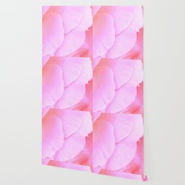 Flower | Flowers | Floral | Pink Rose Petals | Nadia Bonello Wallpaper