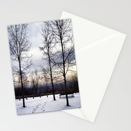 Bare Snowy Trees in South Mountain Reservation Stationery Cards