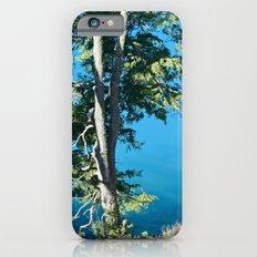 Nature 1 iPhone 6 Slim Case