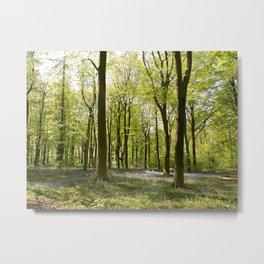 Deep in Micheldever Wood 2 Metal Print