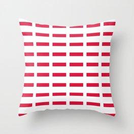 Flag of poland – poland,Polish,Polska,pole,Warsaw,krakow Throw Pillow
