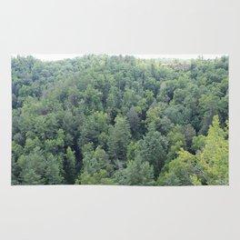 Trees at Natural Bridge State Park Rug
