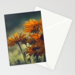 Don't Pass Me By Stationery Cards
