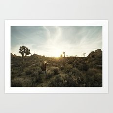 Joshua Tree Portrait 1 Art Print
