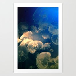 Moon Jelly Art Print