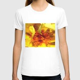 Pollen Macro Photography By Saribelle Rodriguez T-shirt