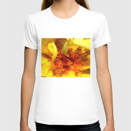 Pollen Macro Photography By Saribelle Rodriguez T-shirt