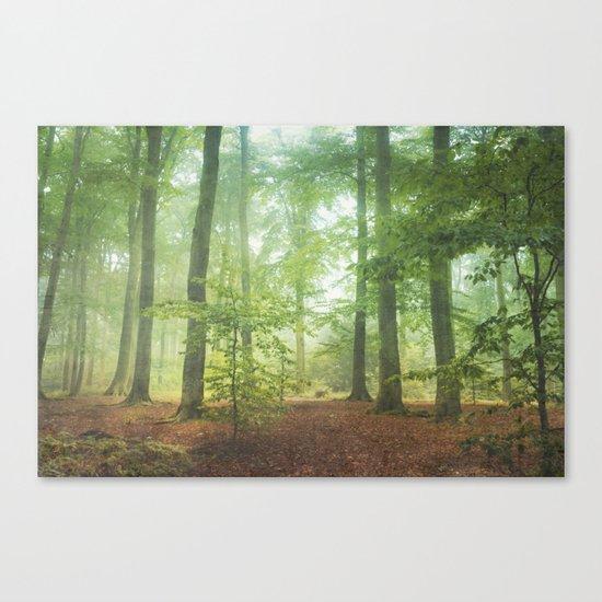 Hazy Summer Forest Canvas Print