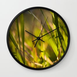 Grass close up shot with sunshine Wall Clock