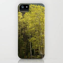 Where Love Grows iPhone Case