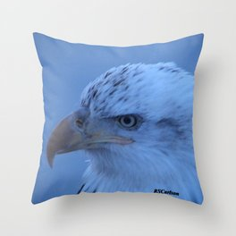 Young Eagle in Failing Light Throw Pillow