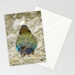 The Mountain Parrot's Back Stationery Cards