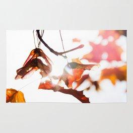Autumn Sonata II Rug
