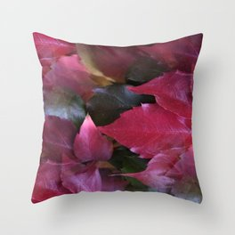 fall is coming -15- Throw Pillow