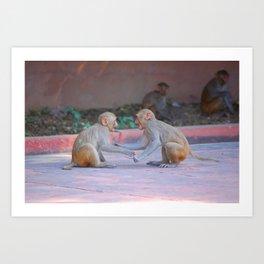 Monkey Fight Art Print