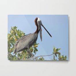 pelican on the tree Metal Print
