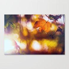 Fall into Autumn Canvas Print