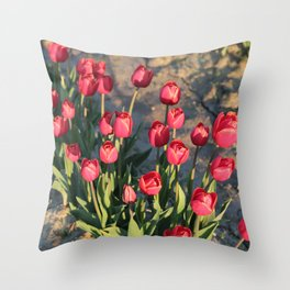 Red Tulips Square Throw Pillow