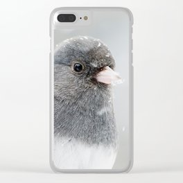 Dark-eyed Junco Clear iPhone Case
