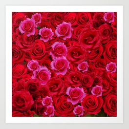 MIXED PINK & RED SPRING ROSES GARDEN  RED VIGNETTE Art Print