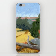 Where Falcons Fly iPhone & iPod Skin