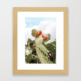 Prickly Pear Summer Framed Art Print