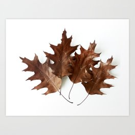 Autumnal Love Art Print